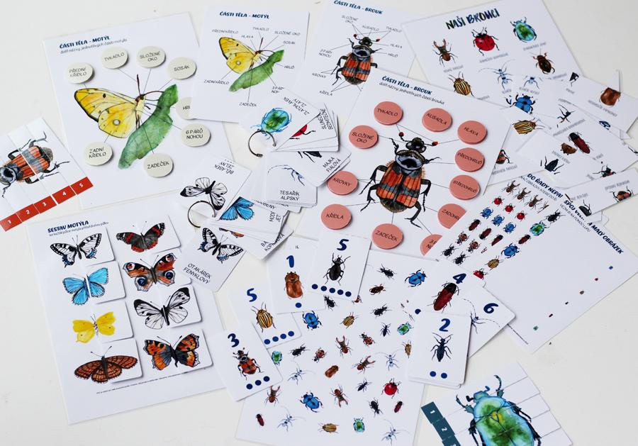 Brouci a motýli – 11 aktivit