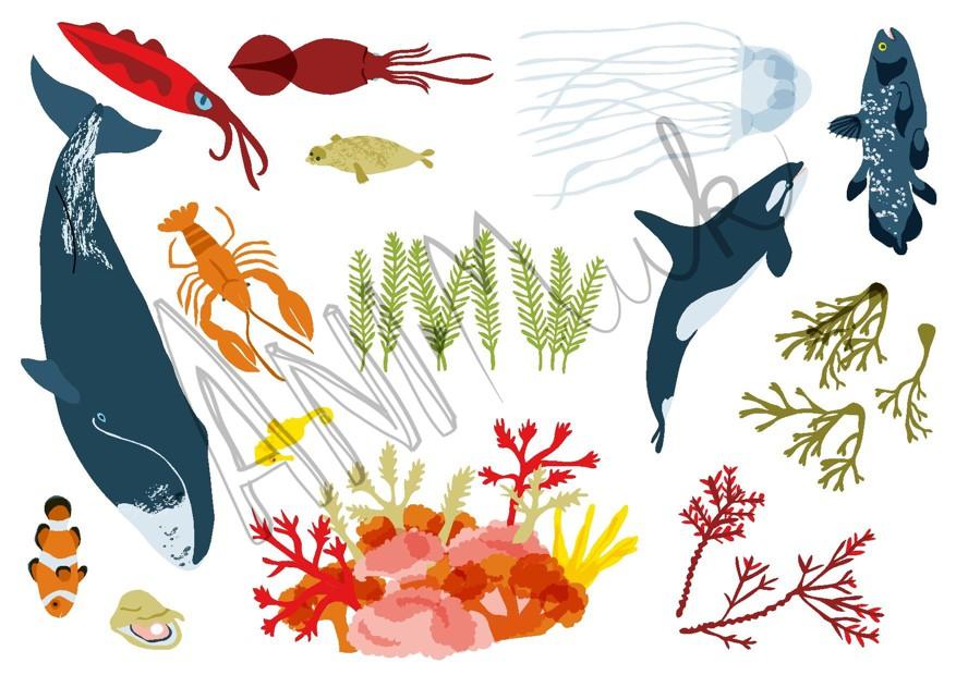 Podmořští tvorové