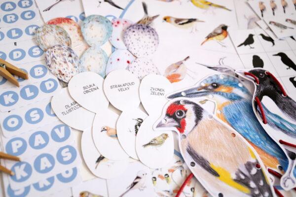 Naši ptáci – 3-6 let, 11 aktivit