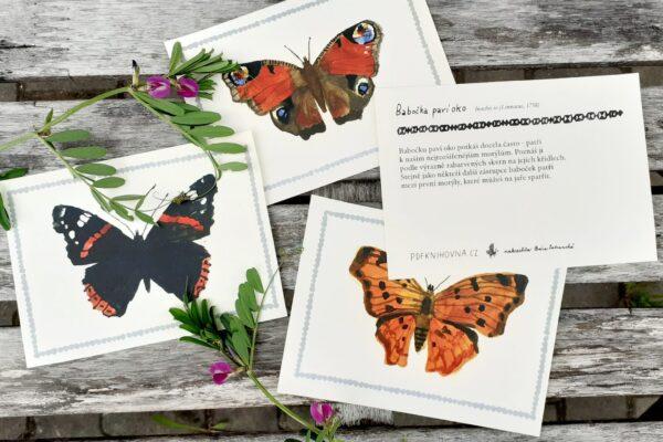 *NOVÉ* Motýli – poznávací karty