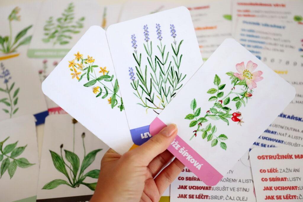 Léčivé bylinky – 8 aktivit